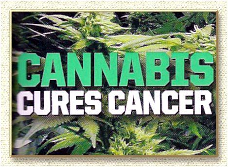Cannabis clinic toronto, medicinal marijuana treatments - medical cannabis clinics corporation. an effort